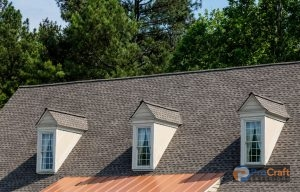 Beautiful Shingle Rooftop with Gables