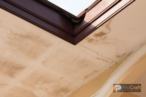 Mold Growth from Roof Leak