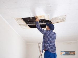 Inspecting Roof Through Ceiling