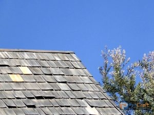 Wind Damaged Shingles