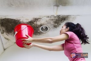 A Young Woman is Collecting Water in a Bucket From a Water Damaged Roof